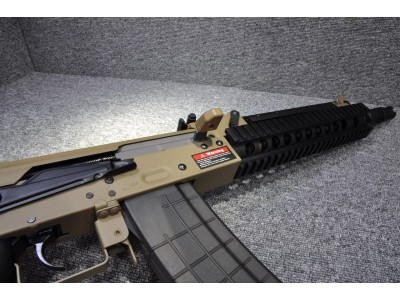 Golden Eagle AK Tactical AEG (DE, LE Stock)